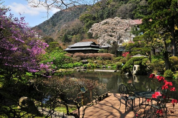 春の回遊式日本庭園では大きな山桜の壮美を楽しむことができます。