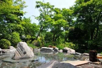 源泉掛流しの庭園を望む露天風呂(殿方)                            当館では、豊富な自家源泉(6本)を使用しております。
