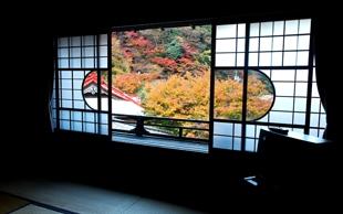 桜五の窓からの紅葉